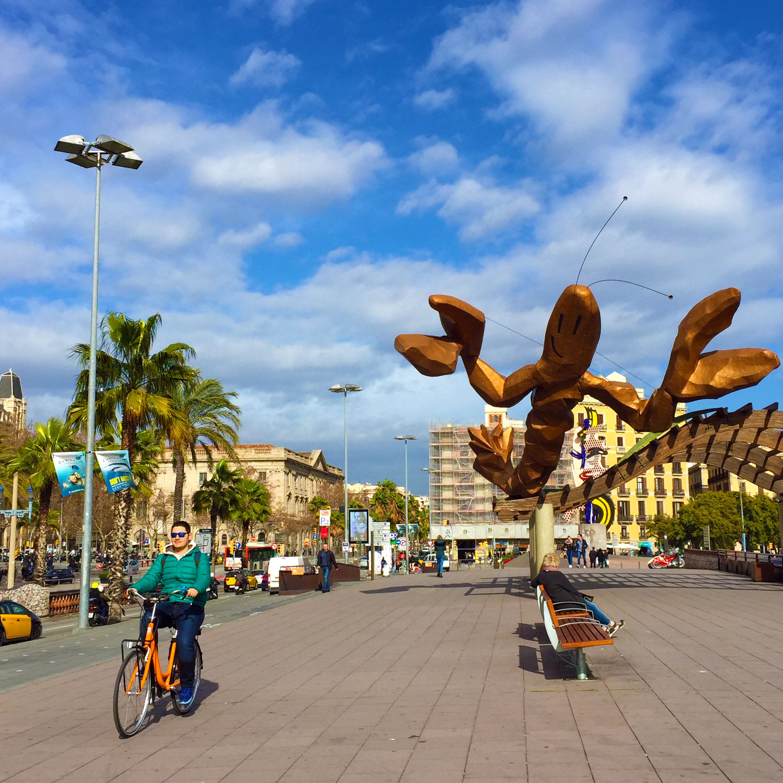 Barselona Bisiklet Kiralama